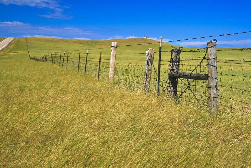 Graslandansicht in South Dakota lizenzfreie stockbilder