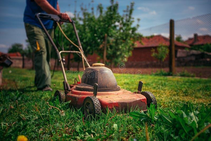 Grasmaaimachine die groen gras in binnenplaats snijden Het tuinieren Achtergrond stock fotografie