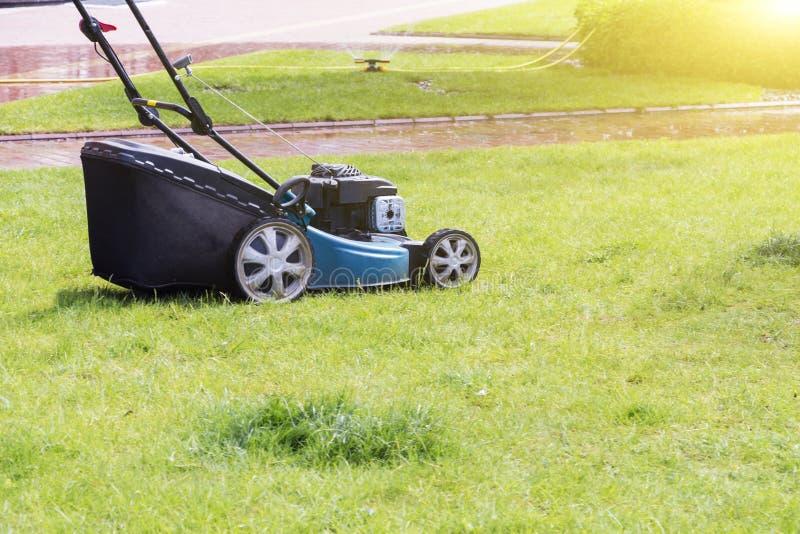 Grasmaaimachine die groen gras in binnenplaats snijden Het tuinieren Achtergrond stock afbeelding