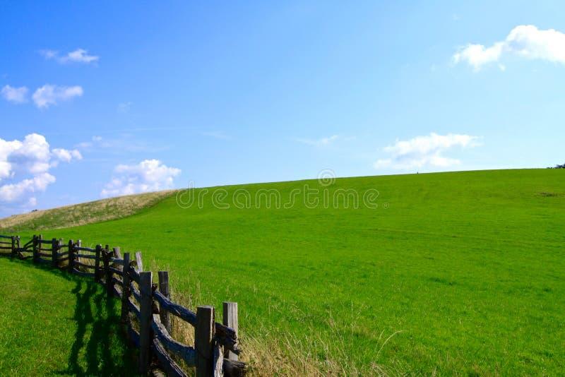 Grasrijk berggebied van Blauw Ridge Parkway in Noord-Carolina stock foto