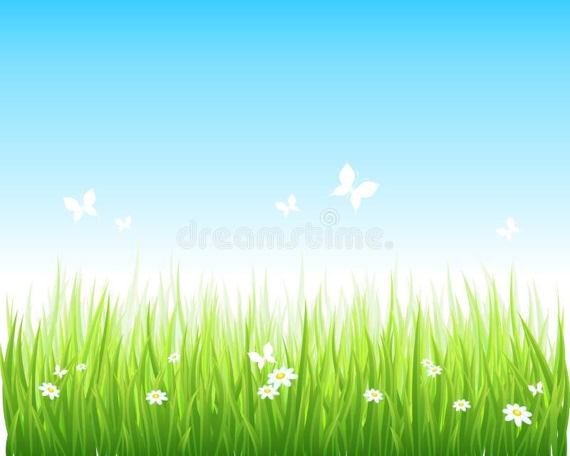 Grasrijk groen gebied en blauwe hemel stock illustratie