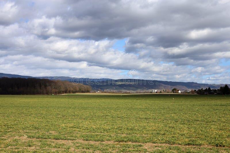 Grasrijke Gebieden en Alpen in Nyon, Zwitserland royalty-vrije stock afbeelding