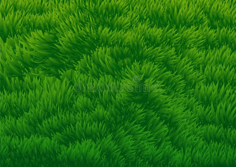 Grasrijke Gebieds achtergrond-vector Illustratie stock illustratie