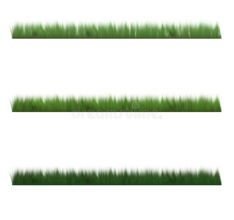 Download Grass short profile stock illustration. Image of illustrate - 14449830