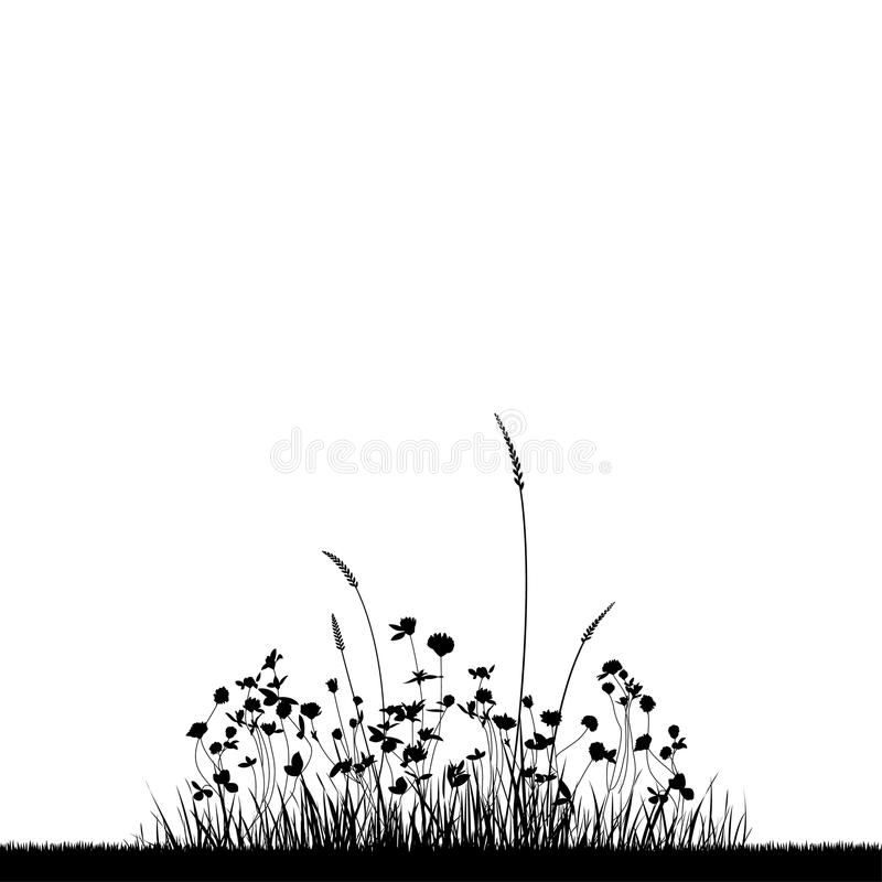 Free Grass Royalty Free Stock Photography - 18150707