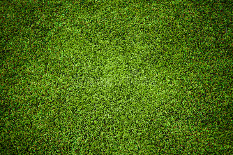 Download Grass stock image. Image of background, club, front, cutting - 18953747