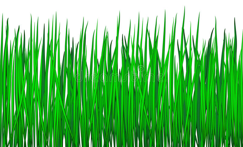 Download Grass stock vector. Image of vines, nature, grass, green - 19631041