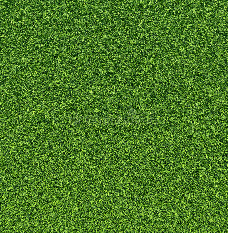 Download Grass stock image. Image of outdoor, meadow, plant, natural - 20726959