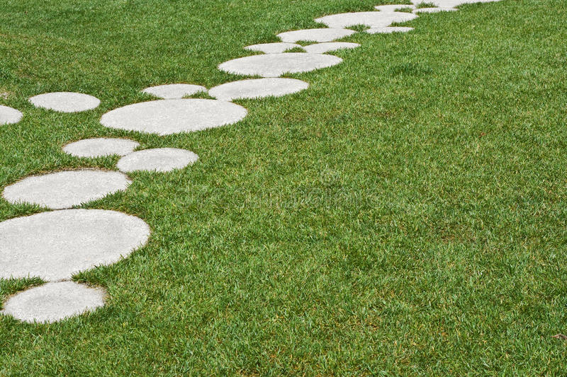 Download Grass stock image. Image of outdoors, grown, lawn, park - 25220151