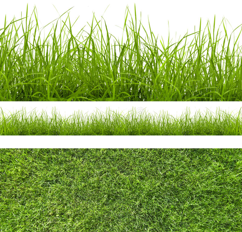 Download Grass stock photo. Image of environment, freshness, lawn - 26542066