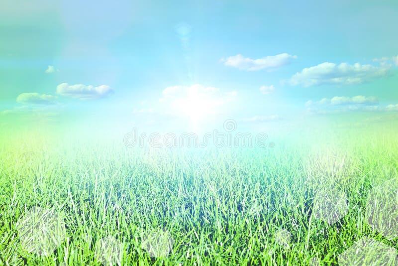 Download Grass stock illustration. Illustration of natural, de - 28801619