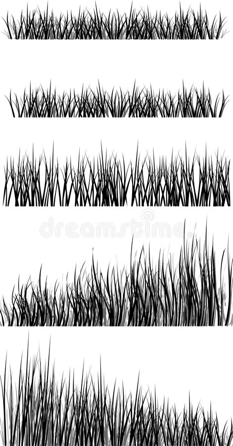 Download The grass stock vector. Image of green, garden, plant - 3941986