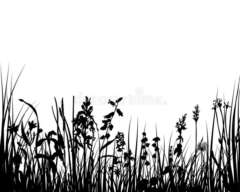 Grass stock illustration