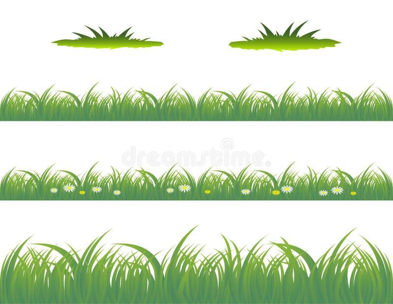 Grass. Vector illustration of grass patterns