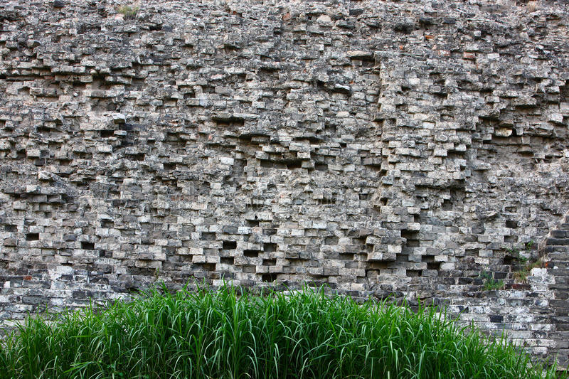 Download Grass and ancient wall stock photo. Image of architecture - 23554886