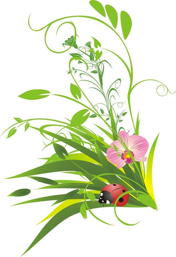 Free Grass And Ladybird Stock Photo - 9977250