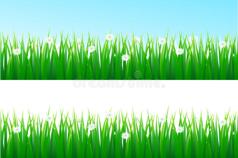 Download Grass background stock vector. Image of element, lawn - 18237027