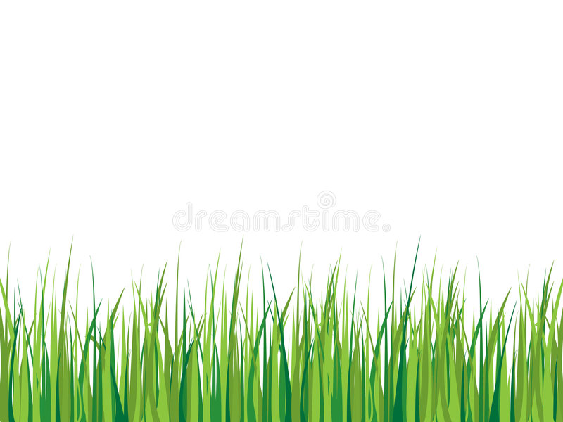 Grass background royalty free illustration