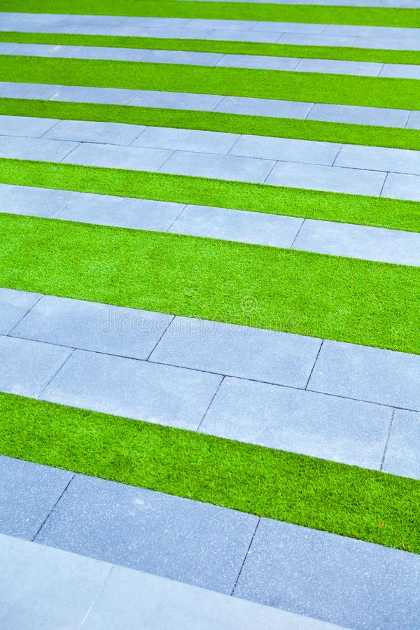 Grass background green lawn pattern textured stock photography