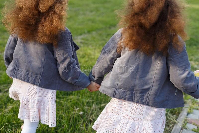 Grass background. Two twins girls hand in hand walking on the meadow in park. From back and rear. Curly toddler sisters stock photography