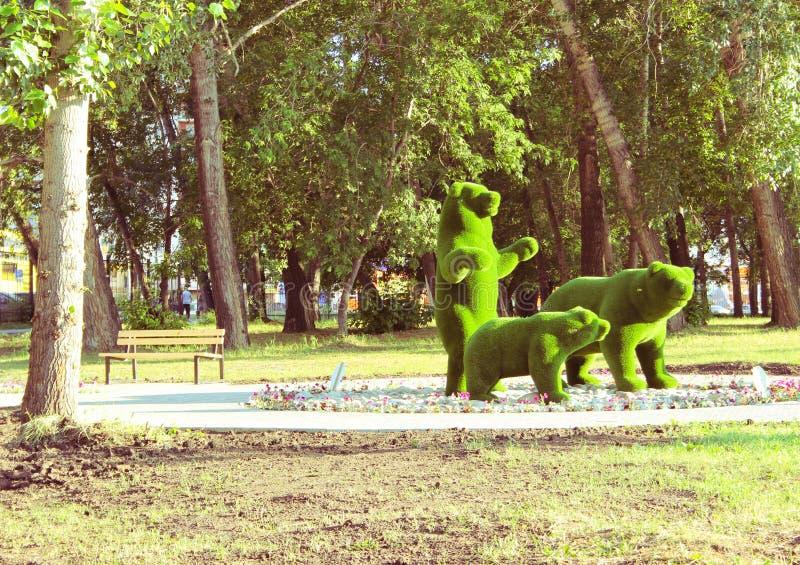 Grass bear family stock image