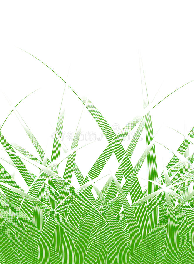 Download Grass blades stock vector. Image of illustration, background - 10890612