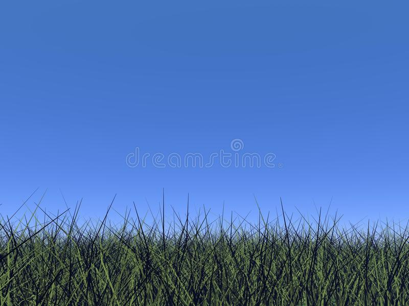 Download Grass And Blue Sky - 3D Render Royalty Free Stock Images - Image: 34358959