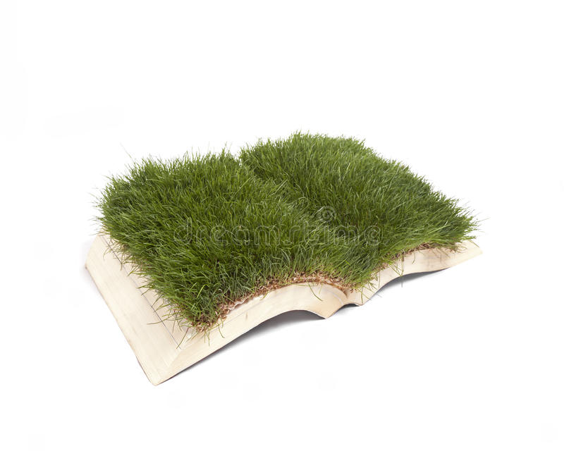 Grass Book royalty free stock image