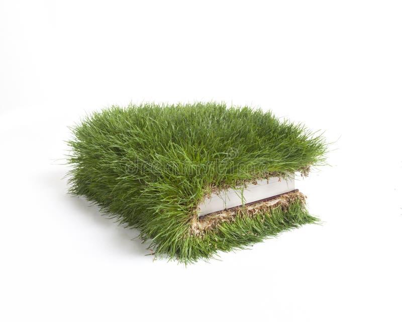 Grass Book stock image