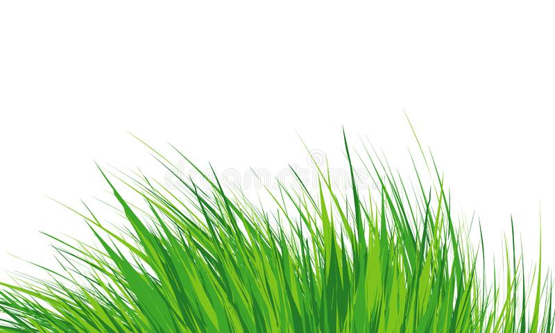Grass Border , Simple meadow grass, wild lawn. Vector Illustration. Grass Border Abstract green grass . Simple meadow grass, wild lawn. Flat vector illustration