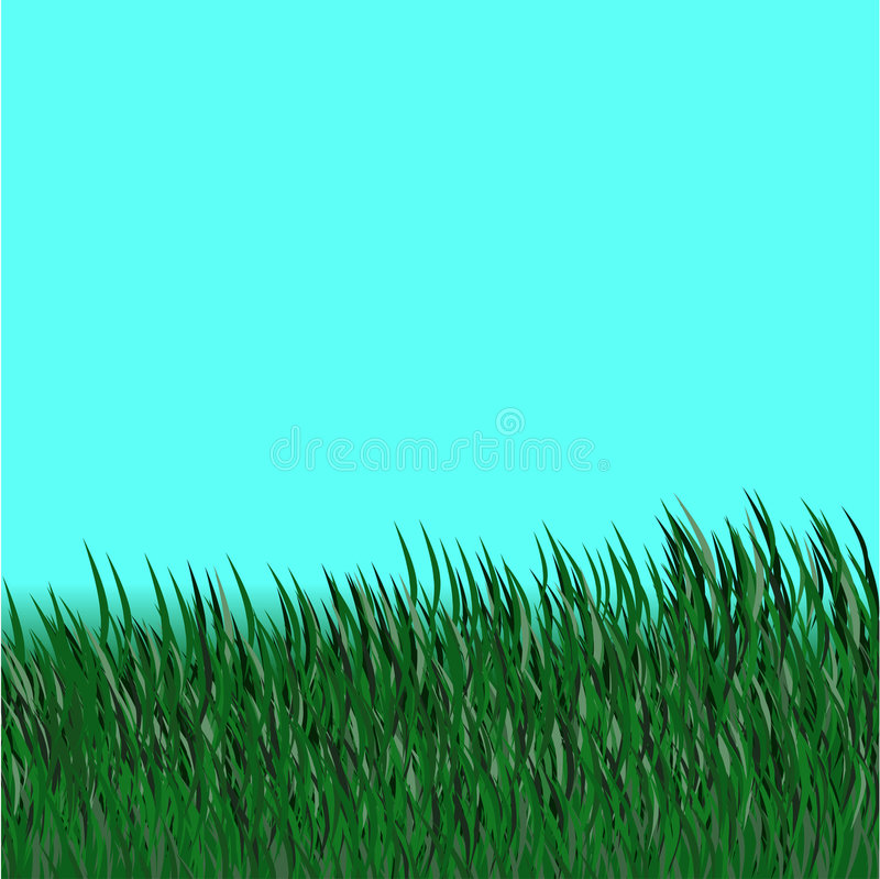 Download Grass brush stock vector. Image of pasture, heavenly, panoramic - 7654102