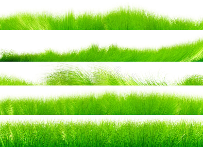 Grass Brush Set 01 royalty free illustration