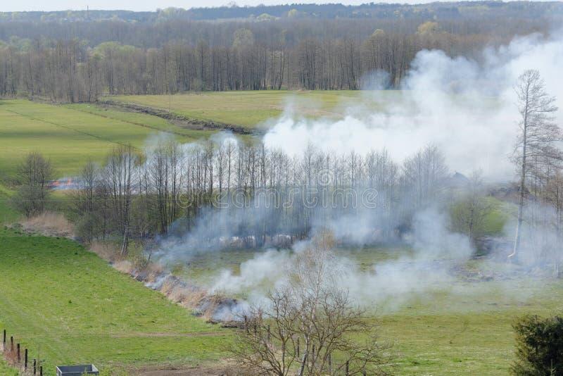 Grass burning stock photography