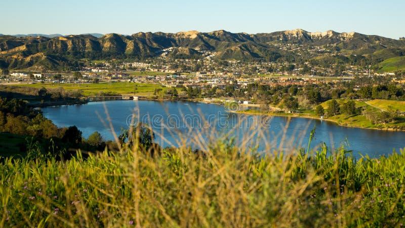 Grass Castaic Lake California royalty free stock image