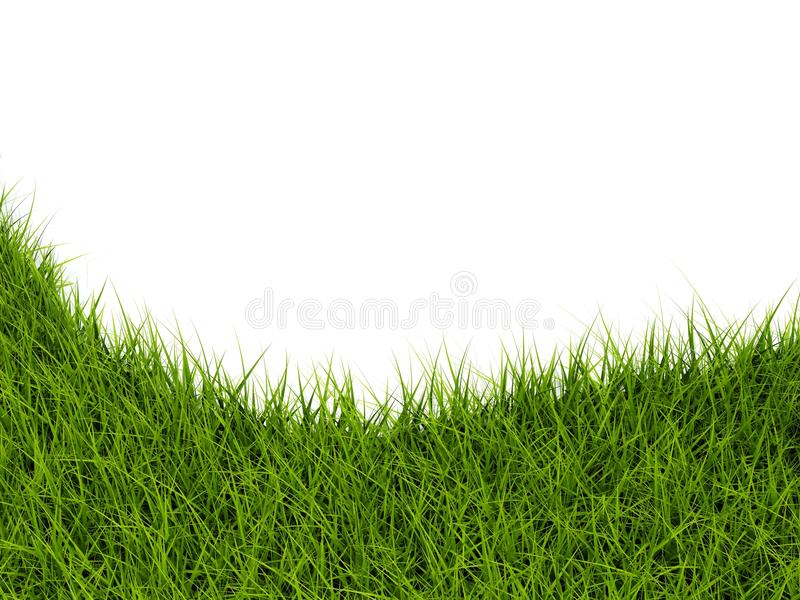 Download Grass closeup stock illustration. Image of shaped, blank - 13271970