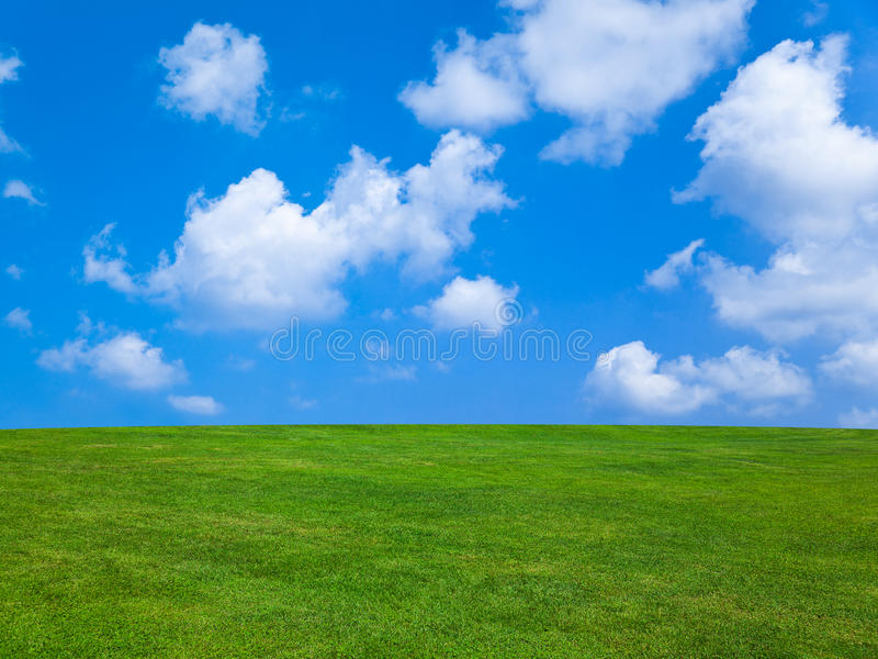 Grass and cloudy sky. Abstract nature background royalty free stock photo