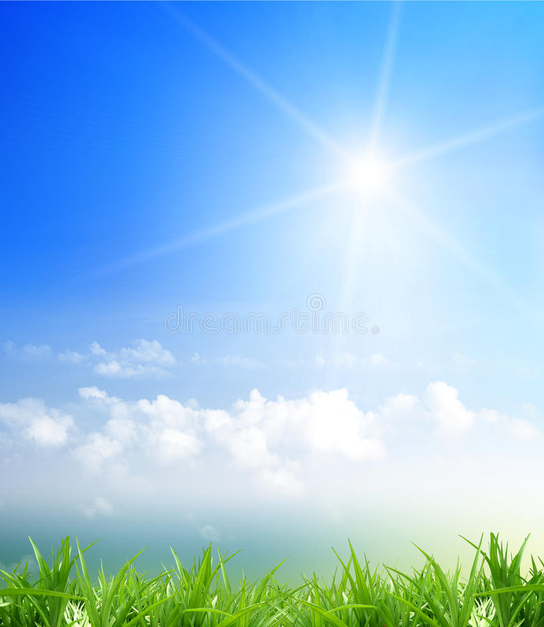 Grass and cloudy sky. Cloud and blue sky,grass and sky