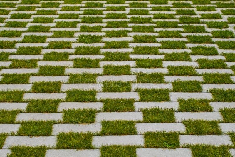 Grass and cobblestone pavement , checkered floor. Grass and cobblestone pavement - checkered floor stock image