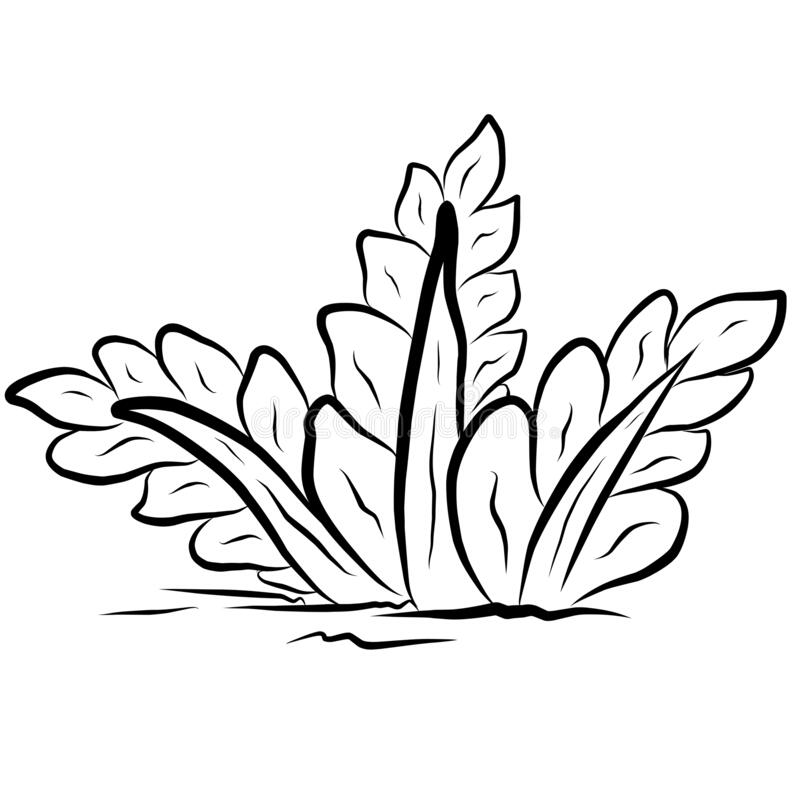Grass Coloring Stock Illustrations 7 995 Grass Coloring Stock Illustrations Vectors Clipart Dreamstime