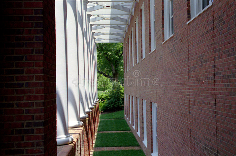 Grass Corridor royalty free stock photography