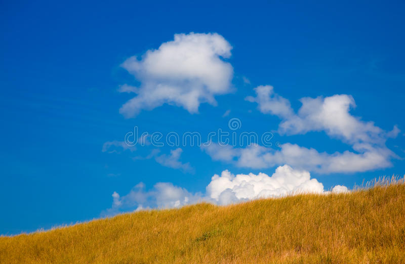 Download Grass Covered Hill With Blue Sky Stock Image - Image of sunny, summer: 12572307