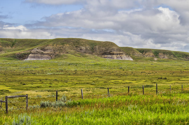 Download Grass covered hills stock photo. Image of fluffy, focus - 32920542