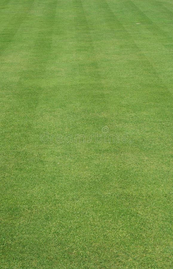 Download Grass Cut With Stripes Royalty Free Stock Images - Image: 2469209