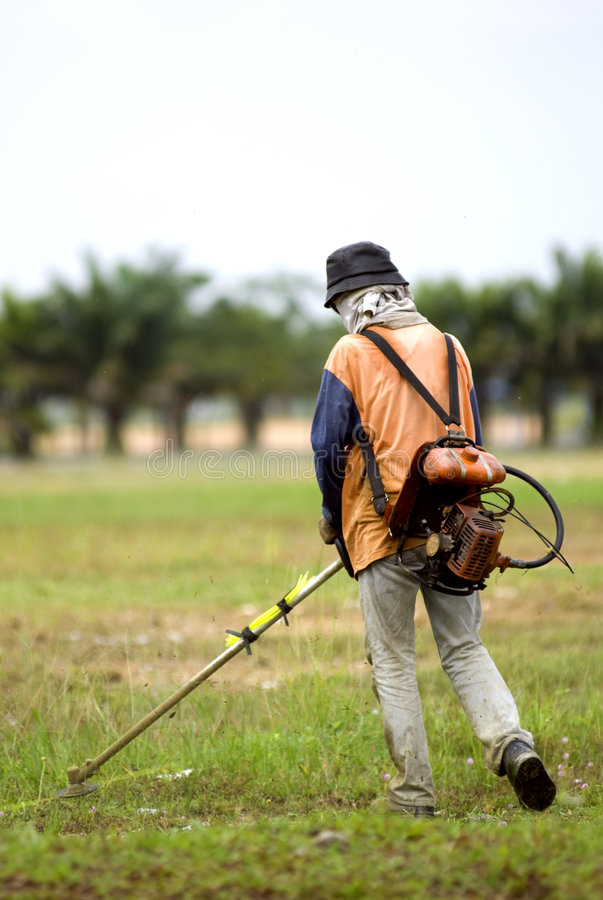 Download Grass cutter stock photo. Image of people, machine, work - 3615520