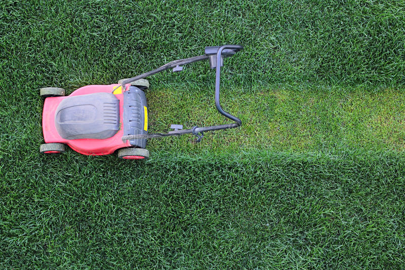 Grass cutter at the lawn. Grass cutter cuts the green lawn stock photography