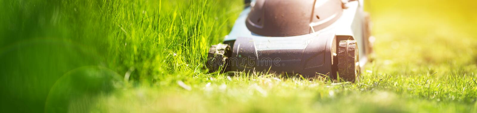 Grass cutter mowing the lawn. In summer stock image