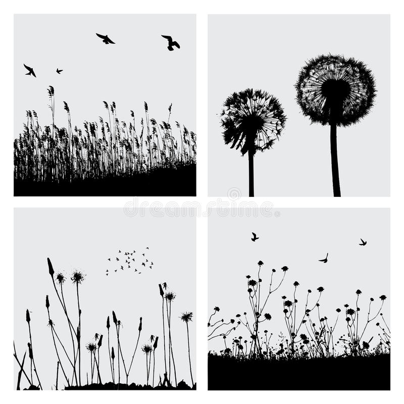Grass and dandelion. Vector grass and dandelion. (please visit my portfolio for more...) Additional vector format Eps8 (you can very easy edit with separate
