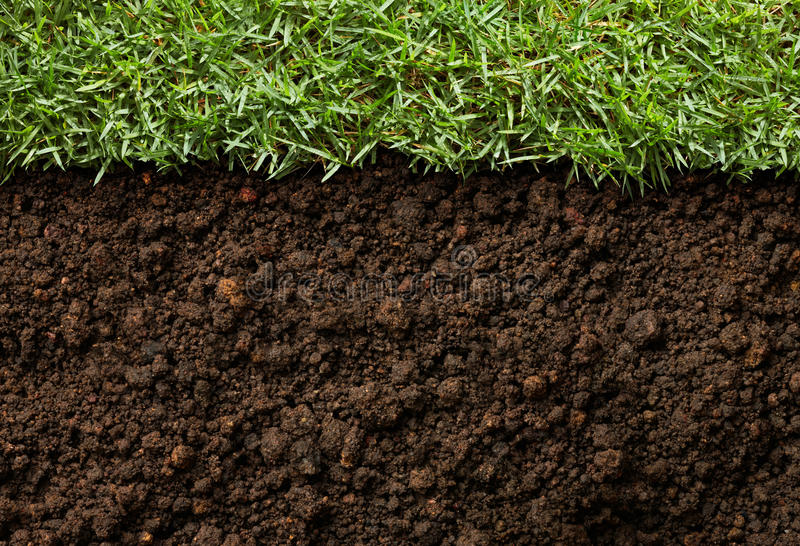 Grass And Dirt Royalty Free Stock Photo