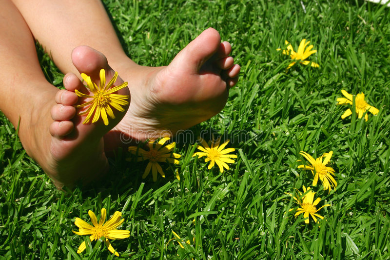 Grass Feet royalty free stock image