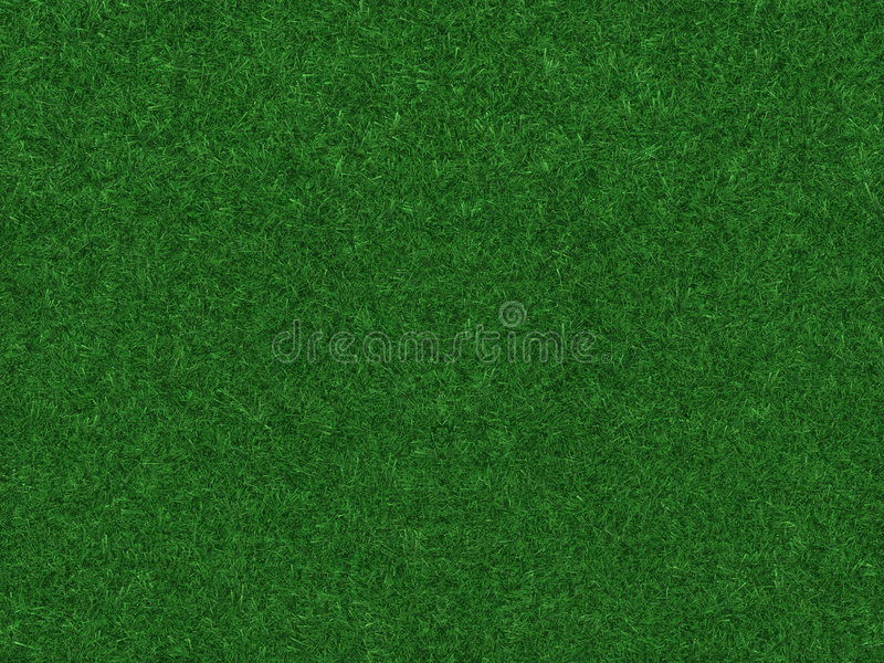 Grass field royalty free illustration